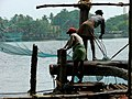 Workers on the Chinese Nets - Old Cochin - Kochi - India.JPG