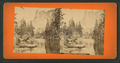 Yosemite Valley, California, from Robert N. Dennis collection of stereoscopic views 4.png