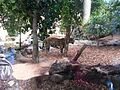Zoo madrid - panoramio (2).jpg