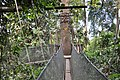 Zoomed shot of the L shaped canopy walk (11966901285).jpg