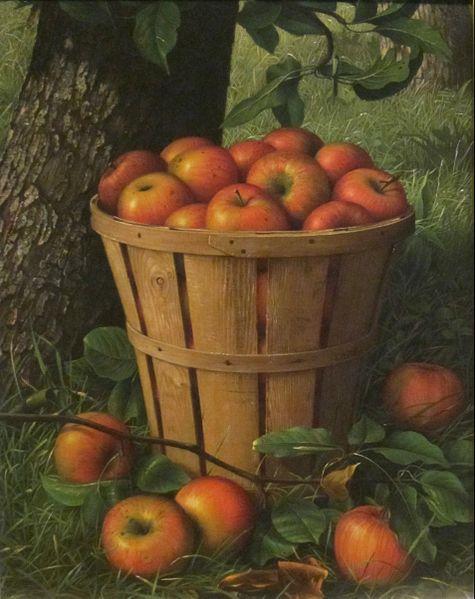 Descartes compara su método con una cesta de manzanas (creencias), donde puede que algunas estén podridas, y para evitar que se estropeen, se ha de inspeccionar una por una.