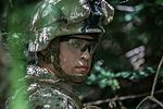 'Lava Dogs' strengthen Pacific forces with JEIF 151026-M-TM809-107.jpg