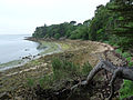 Île de Berder-Plage.jpg