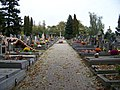 Řepský hřbitov, hlavní cestička.jpg