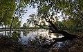 Історичний ландшафт Київських гір і долини р. Дніпра DSC 0943.jpg