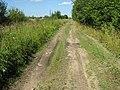 Булыжниковая дорога (точнее то что от нее осталось) - panoramio.jpg