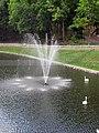 Гомель. Парк. У Лебяжьего озера. Фото 16.jpg