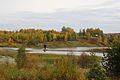 Золоотвал ГРЭС-2 - panoramio (1).jpg