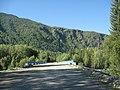 Мост через Бухтарму со стороны с. Берель - panoramio.jpg