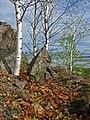 Натюрморт - panoramio - Oleg Seliverstov.jpg