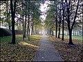 Парк Федорова - panoramio.jpg