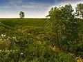 Пейзаж - panoramio (34).jpg