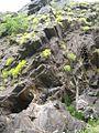 Скелі Мопра 6.jpg