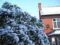 Снег 6 апреля - panoramio.jpg