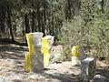 פסל ביער צרעה 12.JPG