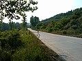 东北川风景 - panoramio (2).jpg
