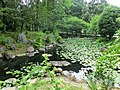 井伊谷宮の池 - panoramio.jpg