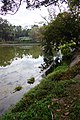 天池 Tianchi Pond - panoramio.jpg