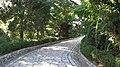 小路 Stone path - panoramio.jpg