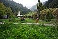 杉林溪葯花園 Shanlinxi Medicinal Plant Garden - panoramio.jpg