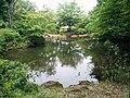 東中野公園 pond 2.jpg