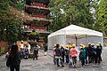 遠足 黄帽 2015 (31852366891).jpg