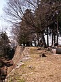 高取城跡(takatorijyou ato) 2010-3-19 - panoramio - ys1979 (5).jpg