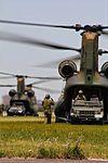 CH-47J(第1ヘリコプター団).jpg