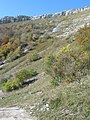 01710 Thoiry, France - panoramio (43).jpg