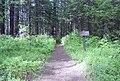 02-17-08, elk creek trail - panoramio.jpg