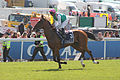 030 Epsom Derby 2015 - Epicuris and Thierry Thulliez going to post (18401373688).jpg