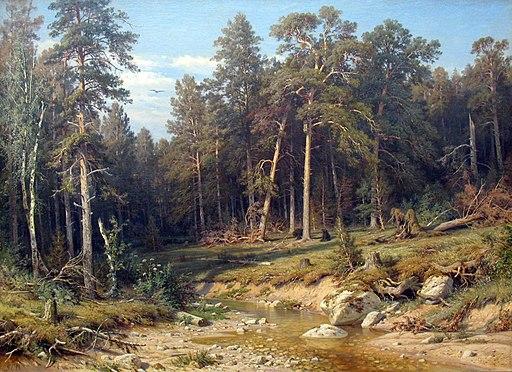 1872 Schischkin Pinienwald anagoria