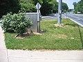 2007 05 22 - NW corner looking N.JPG