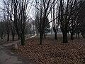 2012-Tychy-Park Solidarności-foto-Beata-Wąsowska 6.jpg