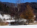 2012 'Seegfrörni' - Türlersee - Hausen am Albis 2012-02-18 13-15-16 (SX230).JPG