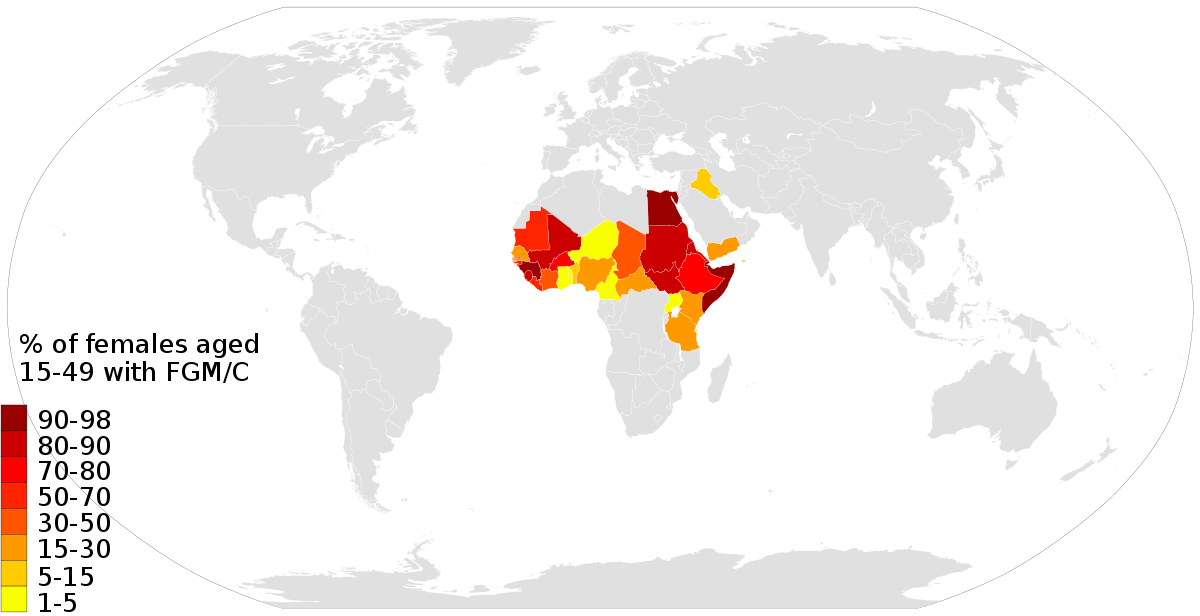 prevalence of female genital mutilation by country