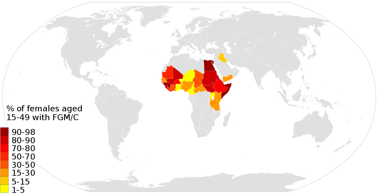 a look at the history and major forms of the practice of female genital mutilation Who defines mutilation challenging imperialism in the discourse of female  the three main forms of cutting  female genital mutilation: the practice and its.