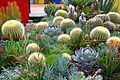 2013 Melbourne International Flower and Garden Show (8584069621) (3).jpg