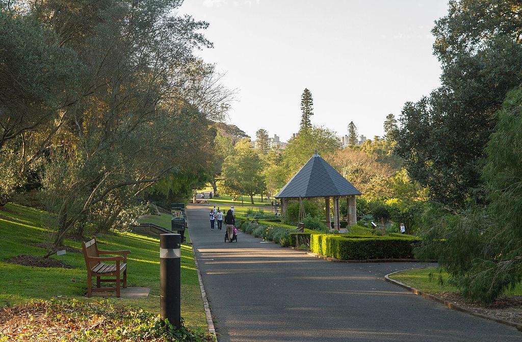 File20150913 Royal Botanic Gardens, Sydney  2jpg