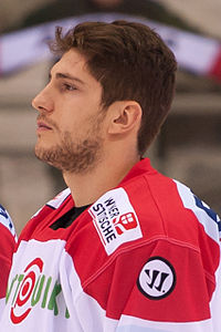 20150207 1758 Ice Hockey AUT SVK 9546.jpg