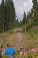 2015 Rally Finland SS5 Himos 1 26.jpg