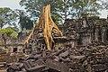 2016 Angkor, Preah Khan (38).jpg