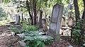 20171004 135845 Old Jewish Cemetery in Bacău.jpg