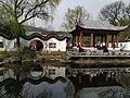 2019南京梅花山05.jpg