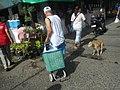 2644Baliuag, Bulacan Poblacion Proper 56.jpg