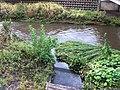 2 Chome Yagumodai, Chōfu-shi, Tōkyō-to 182-0015, Japan - panoramio.jpg