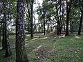 615774 pow krakowski gm Czernichow Czernichow dwor park 10.JPG