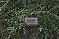 68-218-5013 Миньковецький дендропарк (1).jpg