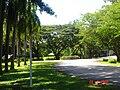AIT, Thailand - panoramio - Seksan Phonsuwan (2).jpg