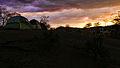 AMA Primera tarde del Florecimiento de los Guayacanes (12144339866).jpg